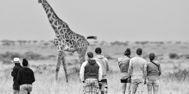 People-and-Giraffe